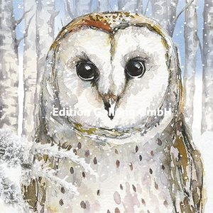 Carola Pabst Postcard Christmas | Wintery Owl