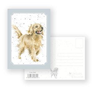 Wrendale Designs 'Golden Boy' Postcard