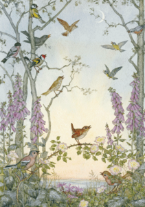 Postcard Molly Brett | Dawn Chorus