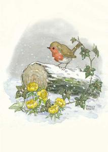 Postcard Molly Brett | Winter robin