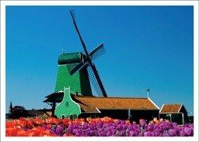 Postcard Kiek | Green Windmill