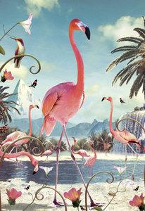 Standing Flamingo Individual Postcard by Max Hernn