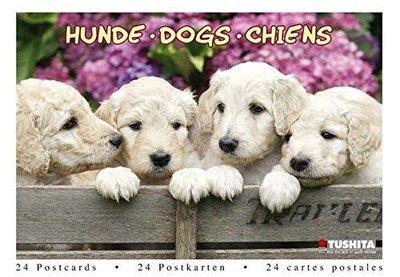 Tushita Postcard Book   Dogs