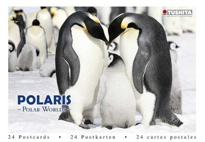 Tushita Postcard Book | Polaris - Polar Worlds