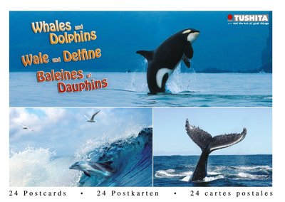 Tushita Postcard Book | Whales and Dolphins