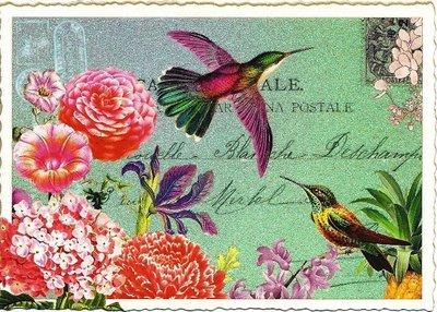 Postcard Edition Tausendschoen | Eisvogel