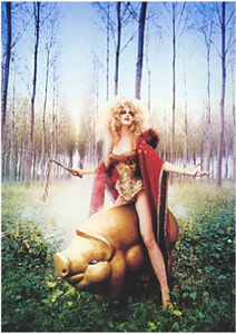 Fotofolio Postcard | Hunting for Truffles, 1996