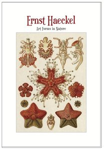 Ernst Haeckel Postcard Set