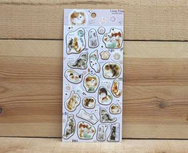 Lianfeng Watercolour Stickers | Give me a cat