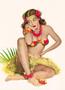 Postcard Pin Up   Hula Hawaii