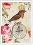 Postcard Edition Tausendschoen   Rotkehlchen