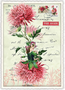 Postcard Edition Tausendschoen | Dahlienfee
