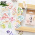 Sticker Flakes Box   Different Leaves_