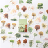 Sticker Flakes Box | Forest _