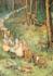 Postcard Margareth W. Tarrant   The Fairy Way_