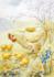 Postcard Eileen Chandler | Hen and Chicks_