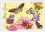 Postcard Edition Tausendschoen | Schmetterlingsfest_
