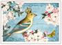 Postcard Edition Tausendschoen | Goldkehlchen_