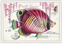 Postcard Edition Tausendschoen | Fisch Rosa_